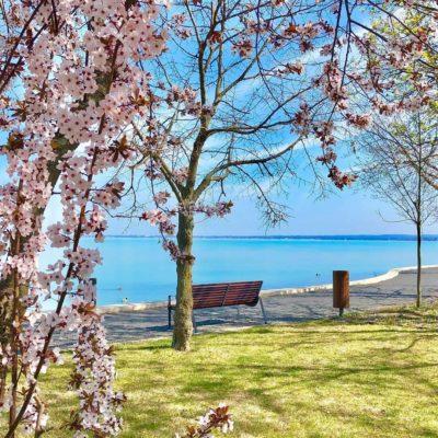Frühling in Ungarn